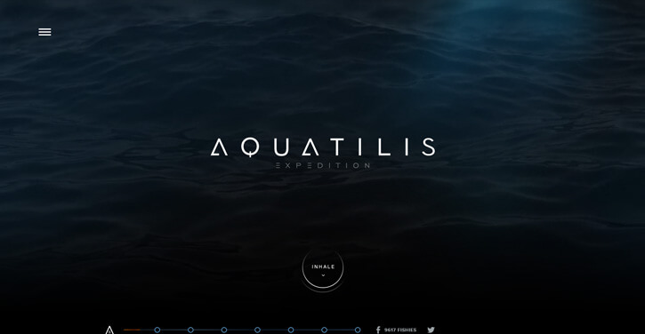 Aquatilis Expedition Dark Themed Website Design
