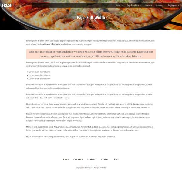 Fresh Magazine Style Blog WordPress Theme | Website Template - Full Width Page Layout - Nova Marketing Intelligence