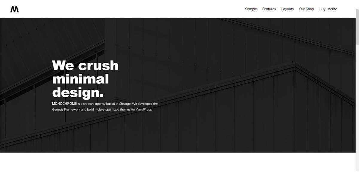 Monochrome Pro - Minimalist WordPress Theme | Website Template